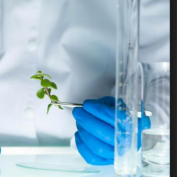 National Press Foundation link: BioTech-Driven Agriculture
