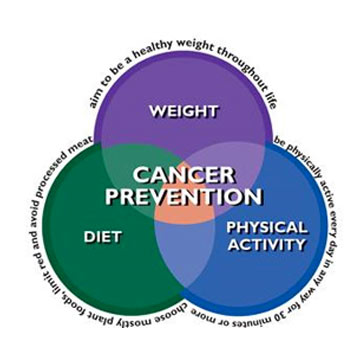 National Press Foundation link: The Science of Cancer Prevention