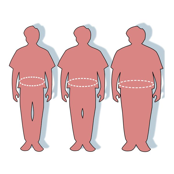 National Press Foundation link: The Biology of Obesity