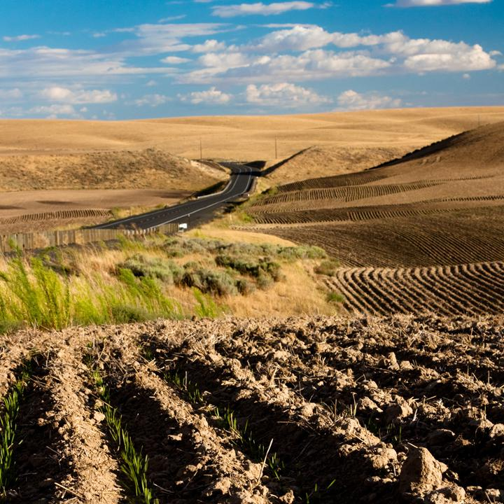 National Press Foundation link: Solving Agriculture's 5 Main Problems
