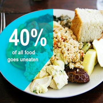 National Press Foundation link: Wasting Away: How Food Ends Up in the Trash