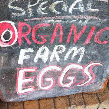 National Press Foundation link: Organic Food Sales Keep Rising