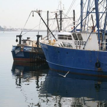 National Press Foundation link: Illegal, Unreported and Unregulated Fishing