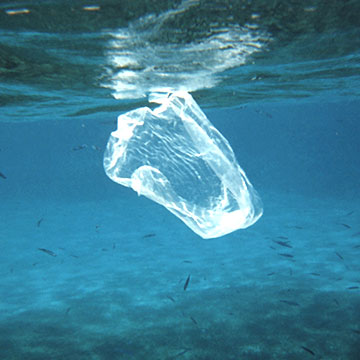 National Press Foundation link: Choking the Seas with Plastic Trash
