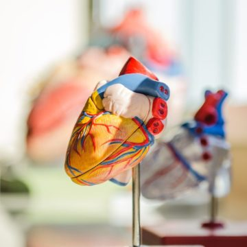 National Press Foundation link: Living with Heart Disease